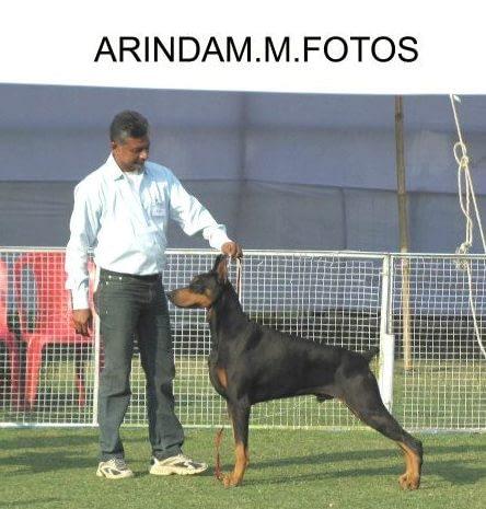 Armani in Jamshedpur - 2013